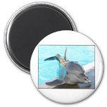 Strike a Pose (Dolphin Photo) Fridge Magnet