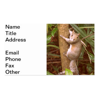 Strike a Pose Double-Sided Standard Business Cards (Pack Of 100)