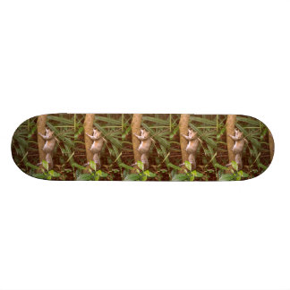 Strike a Pose Skateboard
