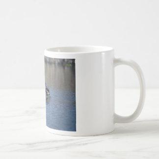 Strike a pose Turtle Coffee Mug