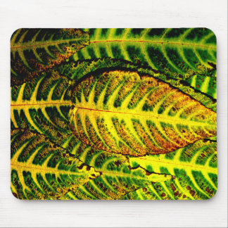 Striking Color Autumn Leaves Mouse Pad