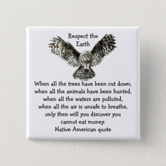 Striking Owl Respect the Earth Native American Button