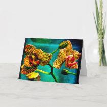 Striking Phalenopsis Orchid Blank Greeting Card