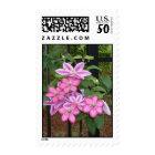Striking Pink Floral Stamps