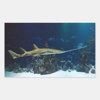 Striking Sawfish Rectangular Sticker