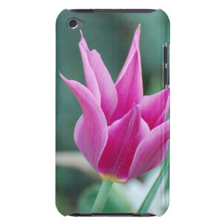 Striking Tulip Barely There iPod Cover