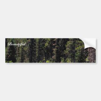 String Lake Bumper Sticker