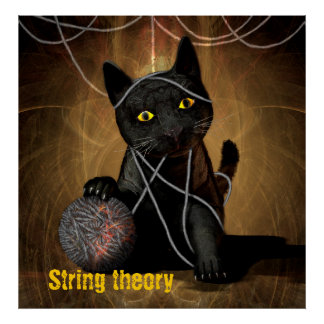 String theory cat poster