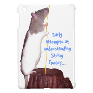 string theory iPad mini case