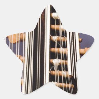 Stringed Instrument V Star Stickers