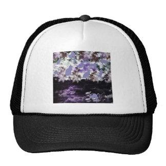 Stripe common coastal highway and cat mesh hat