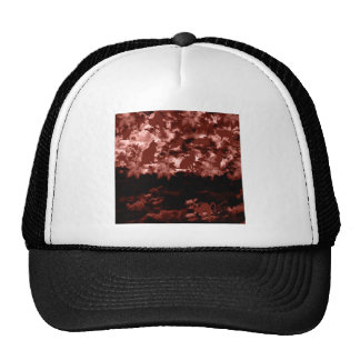Stripe common coastal highway and cat trucker hats