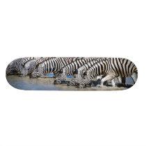 Stripe horse skateboard deck