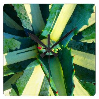 Striped Agave Americana Succulent Square Wallclock