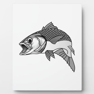 Striped Bass Display Plaque