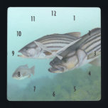 """Striped bass fish illustration square wall clock<br><div class=""""desc"""">Striped bass fish from a vintage natural history illustration shows several bass swimming underwater. Great gift for fishing enthusiast,  lake house or fishing lodge.</div>"""