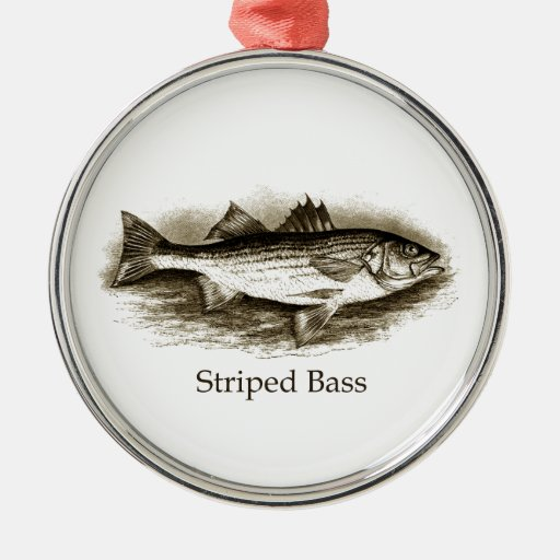 Striped Bass Logo (vintage) Round Metal Christmas Ornament