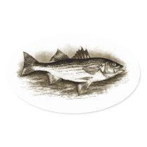 Striped Bass Logo (vintage) Oval Sticker
