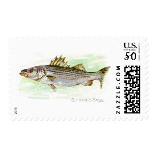 Striped Bass Postage