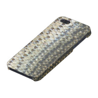 "Striped Bass Skin iPhone 5 Case ""Savvy"""