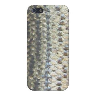 Striped Bass Skin iPhone Case
