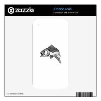 Striped Bass Skins For iPhone 4
