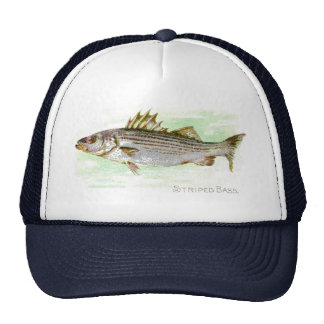 Striped Bass Trucker Hat