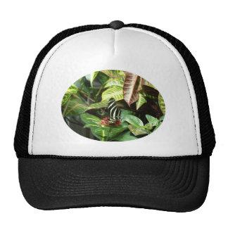 Striped Butterfly Trucker Hats