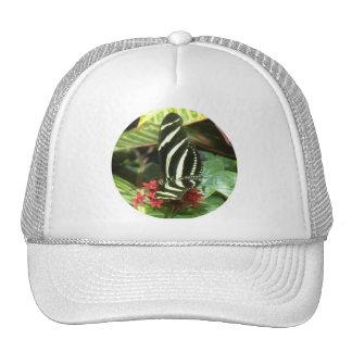 Striped Butterfly Hat