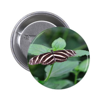 Striped Butterfly Pinback Button