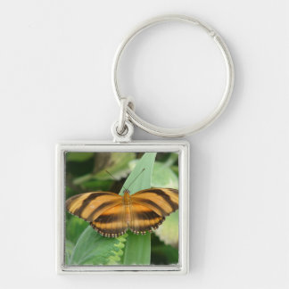 Striped Butterly Keychains