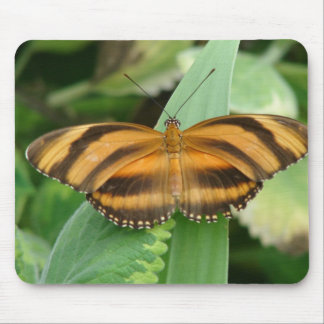 Striped Butterly Mouse Pad