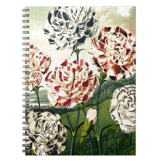 Striped Carnations Notebook