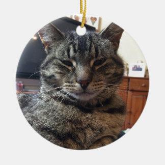 Striped cat ceramic ornament