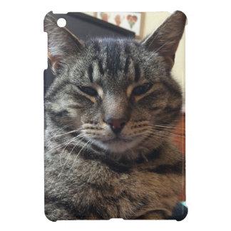 Striped cat iPad mini cases