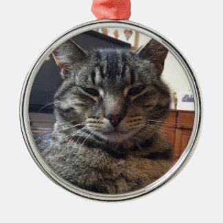 Striped cat metal ornament