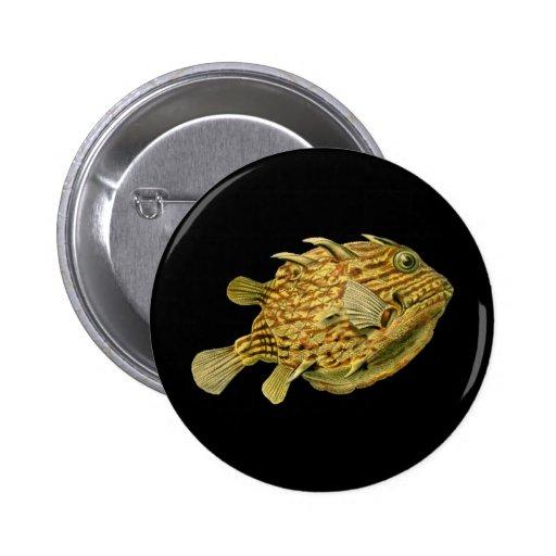 Striped cowfish button
