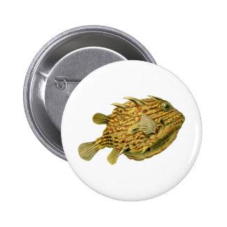 Striped cowfish pins