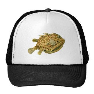 Striped cowfish trucker hat