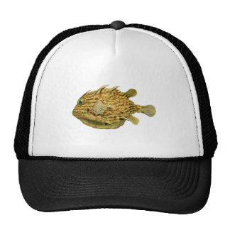 Striped cowfish trucker hats