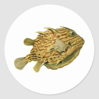Striped cowfish round sticker