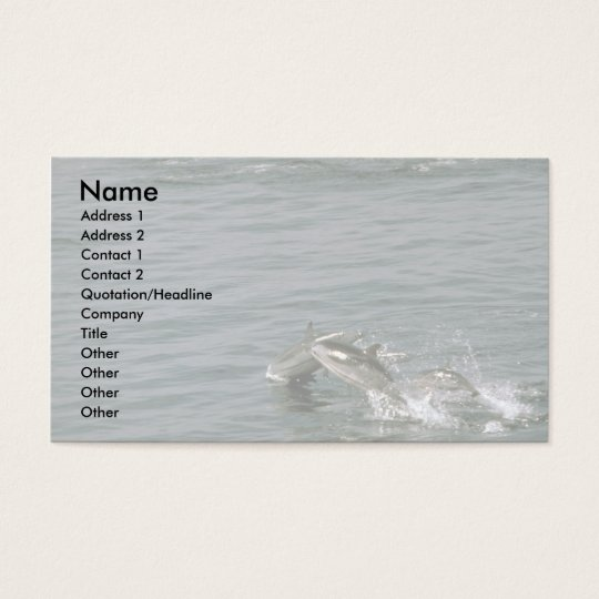 Striped dolphin business card