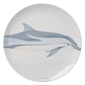 Striped Dolphin Dinner Plate