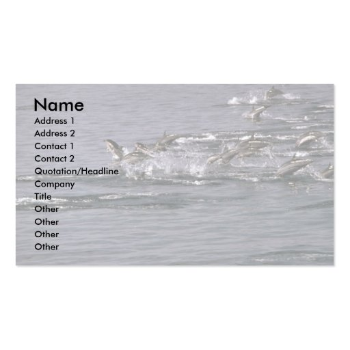 Striped dolphin Double-Sided standard business cards (Pack of 100)