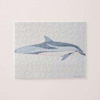 Striped Dolphin Puzzle