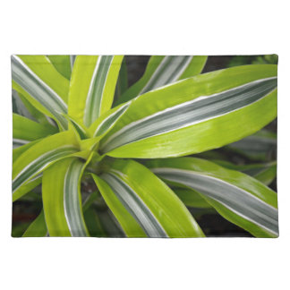Striped green tropical leaves placemats
