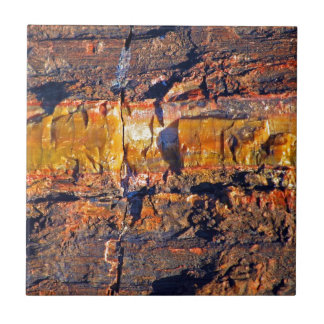 """""""Striped Petrified Wood"""" collection Ceramic Tile"""
