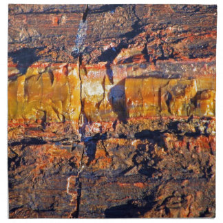"""""""Striped Petrified Wood"""" collection Napkin"""