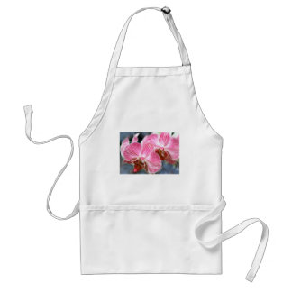 Striped Pink Phalaenopsis Orchids Adult Apron