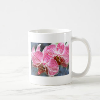 Striped Pink Phalaenopsis Orchids Classic White Coffee Mug